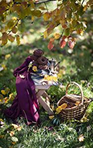 Bilder Herbst Stillleben Backware Ast Blatt Weidenkorb Gras