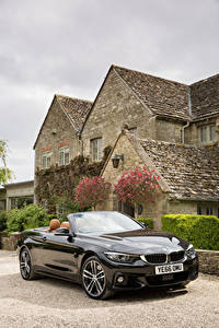 Picture BMW Black Cabriolet Metallic 2017 435d xDrive Cabrio M Sport Package Cars