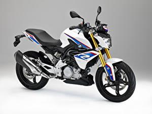 Bilder BMW - Motorrad Grauer Hintergrund 2015-16 G 310 R Motorrad