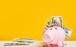 Hintergrundbilder Papiergeld Geld Dollars Farbigen hintergrund Sparschwein