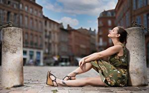 Bilder Sitzend Pose Bein Kleid Unscharfer Hintergrund Bea Mädchens