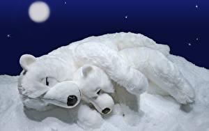Hintergrundbilder Bären Eisbär Jungtiere Spielzeuge 2 Schlaf Mond Schnee