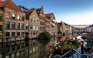 Bilder Belgien Gebäude Fahrradlenker Petunien Kanal Gent Städte