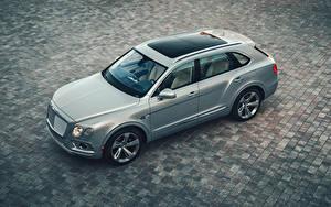 Bilder Bentley Graue Von oben Hybrid Autos 2020 Bentayga Hybrid