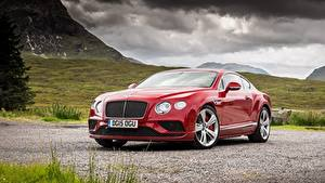 Bilder Bentley Luxus Rot Coupe Continental GT, Speed UK-spec, 2015 Autos