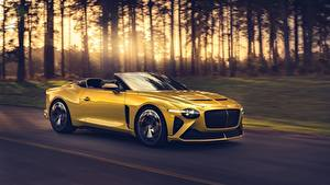 Pictures Bentley Riding Yellow Metallic Roadster Expensive Mulliner Bacalar auto