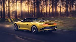 Wallpaper Bentley Yellow Roadster Motion Luxurious Metallic Mulliner Bacalar Cars