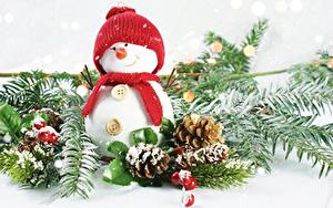 Fotos Beere Ast Zapfen Schneemänner Mütze Lächeln Schal