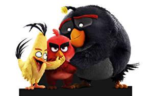 Hintergrundbilder Vögel Angry Birds Animationsfilm 3D-Grafik