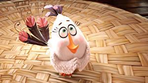 Hintergrundbilder Vögel Federn Angry Birds