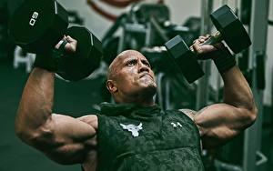 Bilder Bodybuilding Dwayne Johnson Mann Hand Muskeln Hanteln Glatze Prominente