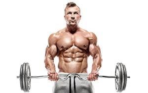 Pictures Bodybuilding Man Barbell Physical exercise Belly Hands Muscle White background athletic