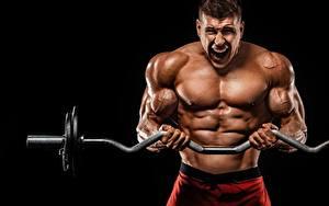 Wallpaper Bodybuilding Men Barbell Workout Muscle Hands sports