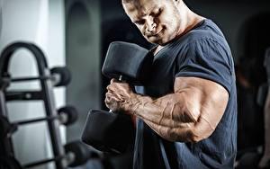 Picture Bodybuilding Man Hands Muscle Dumbbells Workout Sport