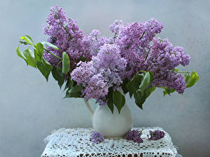 Photo Bouquets Lilac Tablecloth Vase Flowers