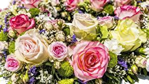 Fotos Sträuße Rosen Viel Mehrfarbige Blüte