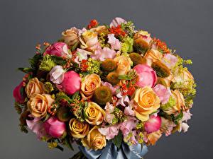 Hintergrundbilder Sträuße Rosen Pfingstrosen Levkojen Grauer Hintergrund Blumen