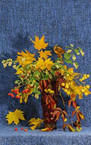 Fotos Sträuße Mehlbeeren Vase Ast Blattwerk Blumen