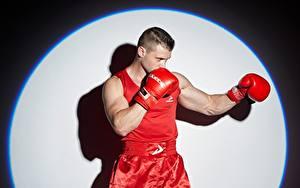 Photo Boxing Men Pose Hands Glove Circles athletic