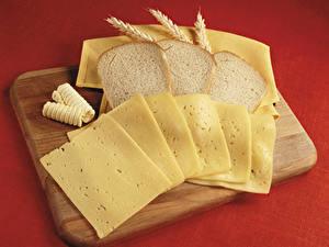 Fotos Brot Käse Schneidebrett Ähre Geschnitten Lebensmittel