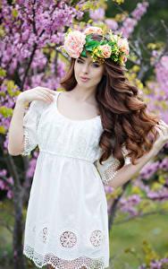 Fotos Braune Haare Kleid Haar