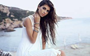 Bilder Braune Haare Blick Kleid Sitzend Hübsche junge frau