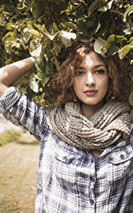 Fotos Braune Haare Schal Starren Ast Mädchens