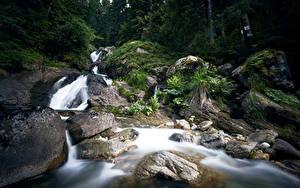 Hintergrundbilder Bulgarien Wald Flusse Steine Wasserfall Bistrica Waterfall