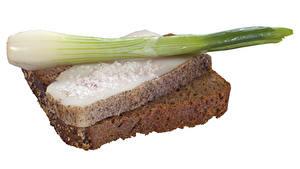 Bilder Butterbrot Brot Frühlingszwiebel Weißer hintergrund Salo - Lebensmittel das Essen