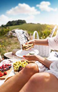 Hintergrundbilder Butterbrot Sandwich Picknick Hand Teller Bokeh das Essen