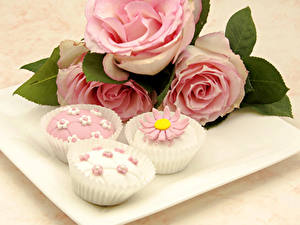 Fotos Törtchen Rosen Design Rosa Farbe Lebensmittel Blumen
