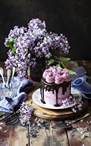Hintergrundbilder Torte Schokolade Flieder Stillleben Bretter Design Lebensmittel