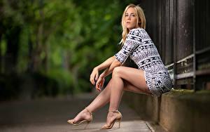 Fotos Blondine Sitzend Kleid Bein Starren Bokeh Camille Mädchens