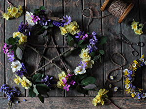 Bilder Kamillen Lupinen Primeln Bretter Design Blumen