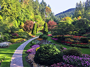 Fotos Kanada Garten Design Allee Strauch Bäume Butchart Gardens Natur