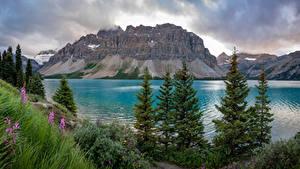 Fotos Kanada Gebirge See Wolke Bow Lake Natur