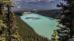 Fotos Kanada Parks See Wälder Banff Von oben Hotel lake Louise, The Fairmont Chateau Natur