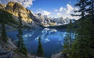 Hintergrundbilder Kanada Parks Berg See Landschaftsfotografie Bäume Felsen Wolke Banff Alberta