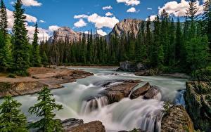 Fotos Kanada Parks Gebirge Flusse Steine Landschaftsfotografie Bäume Wolke Yoho National Park Natur