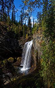 Hintergrundbilder Kanada Park Wasserfall Steine Bäume Felsen Wells Gray Park, Moul Falls
