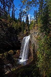 Hintergrundbilder Kanada Park Wasserfall Steine Bäume Felsen Wells Gray Park, Moul Falls Natur