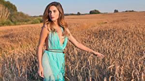 Image Cara Mell Fields Wheat Brown haired Glance Hands Frock Girls