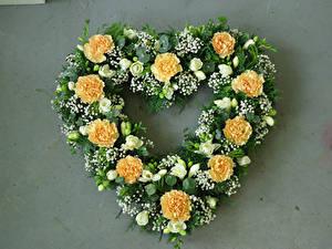 Fotos Nelken Freesien Grauer Hintergrund Herz Design Blumen