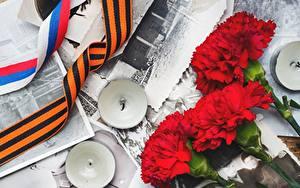Hintergrundbilder Nelken Tag des Sieges 9 Mai Kerzen Rot Blumen
