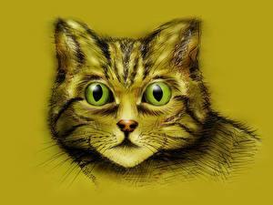 Bilder Hauskatze Gezeichnet Farbigen hintergrund Schnauze Starren