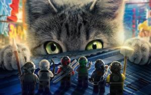 Fonds d'écran Chat domestique Ninja Voir The Lego Ninjago