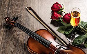 Fotos Schaumwein Rosen Violine Weinglas Lebensmittel Blumen