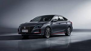 Bilder Changan Graues Metallisch Chinesisch Raeton CC Blue Drive, 2020 automobil