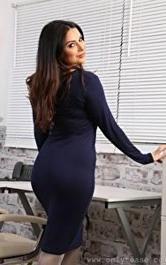 Bilder Charlotte Springer Sekretärinen Starren Kleid Mädchens