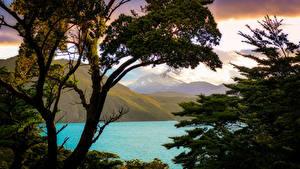 Bilder Chile Gebirge See Ast Patagonia
